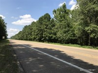 39.7 Ac - Hunting With Home Site Po : Winnfield : Winn Parish : Louisiana
