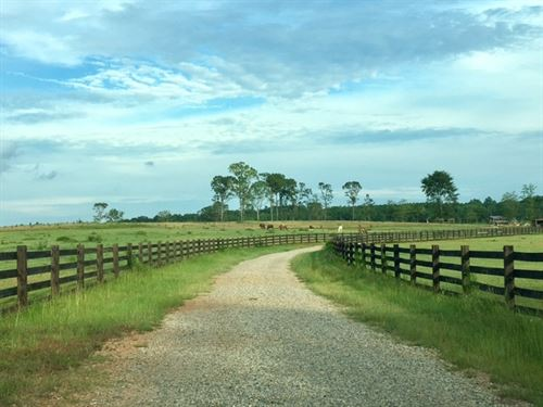 Farm / Hunting / Development : Milledgeville : Baldwin County : Georgia