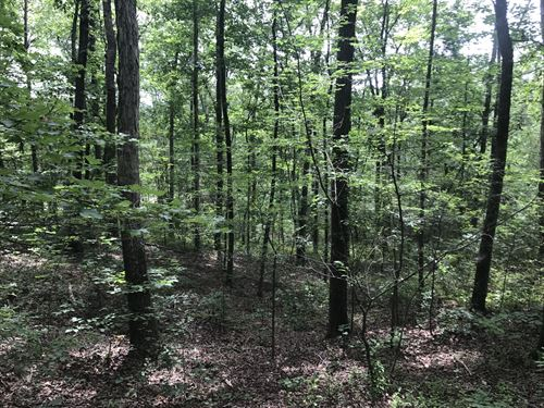 Timber, Farm And River Frontage : Lyerly : Chattooga County : Georgia