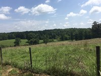 Bear Creek Farm : Statham : Barrow County : Georgia