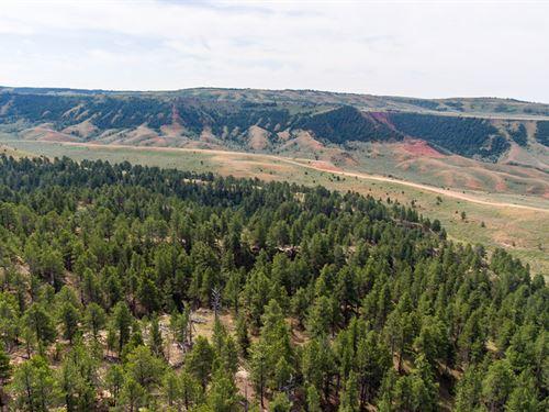 Casper Mountain Parcel 3 : Casper : Natrona County : Wyoming