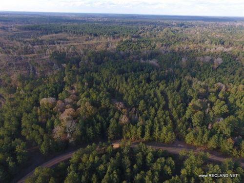 40 Ac - Hunting Tract Near West Mon : West Monroe : Ouachita Parish : Louisiana