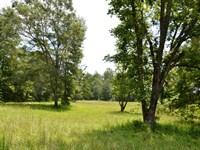 Hatcher Farms : Three Notch : Bullock County : Alabama