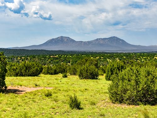 Homesite Only Minutes To Walsenburg : Walsenburg : Huerfano County : Colorado