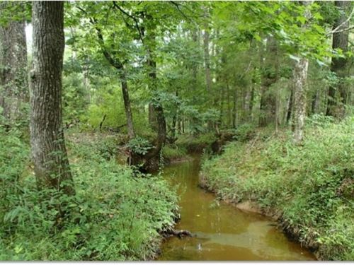 280 Acres In Webster County : Cumberland : Webster County : Mississippi
