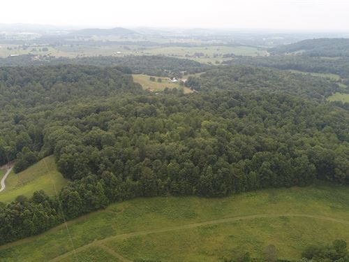 Homesite. Great Views. Hunting. : Somerset : Pulaski County : Kentucky