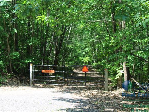 Turn-Key Hunting Property : Lake Nebagamon : Adams County : Wisconsin