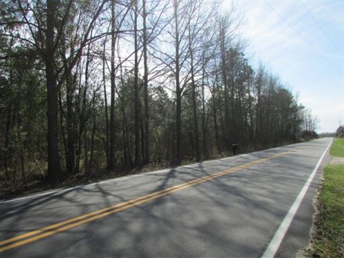 Paxville Tract : Paxville : Clarendon County : South Carolina