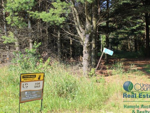 Hunting Property With Pond For Sale : Pittsville : Wood County : Wisconsin