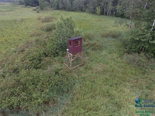 28 Acres Of Hunting Land : Endeavor : Marquette County : Wisconsin