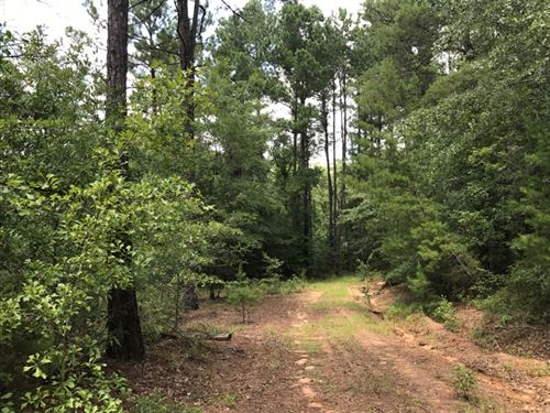 Briar Creek Getaway : Matthews : Jefferson County : Georgia