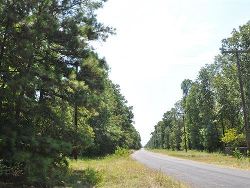 104 Mangum Road : Livingston : Polk County : Texas