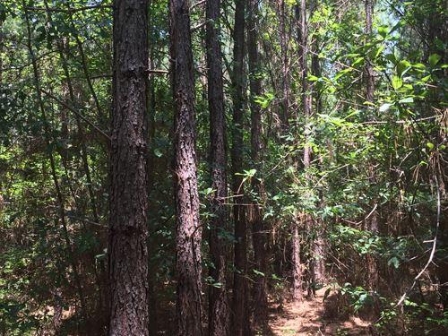 Perdue Plantation : Barnesville : Lamar County : Georgia