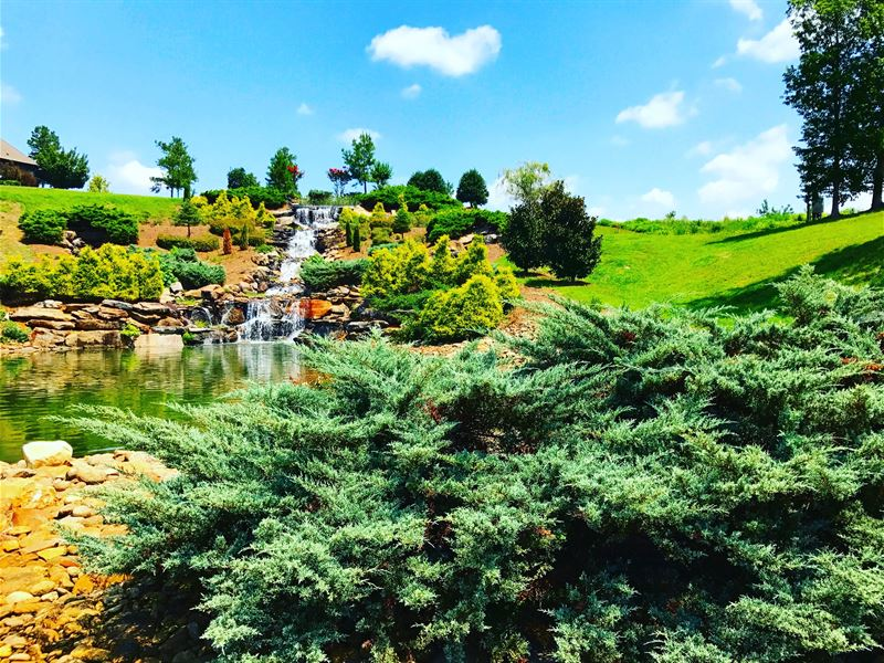 Huge Acreage Lake Lots : Loudon : Loudon County : Tennessee