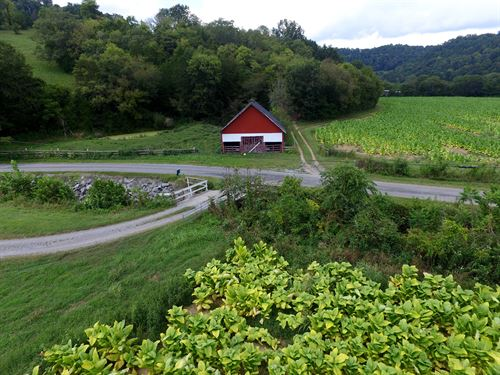 308 Ac W/Hm, Barns, Ponds & Creeks : Whitleyville : Jackson County : Tennessee