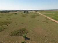Sought After Hunting In Stafford Co : St. John : Stanton County : Kansas
