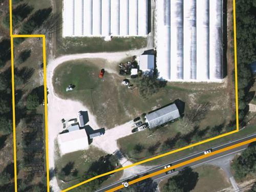 Wekiva Parkway Land, Comm Potential : Sorrento : Lake County : Florida