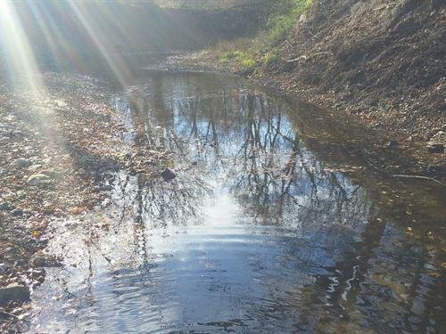 Beautiful Hunter/Wildlife Paradise : Turney : Clinton County : Missouri