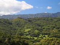 Makali'i Plantation : Kalaheo : Kauai County : Hawaii