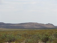 40 Acres In West Texas-$0 Down : Sierra Blanca : Hudspeth County : Texas