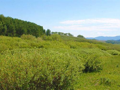Wilset Creek Ranch : Walden : Jackson County : Colorado