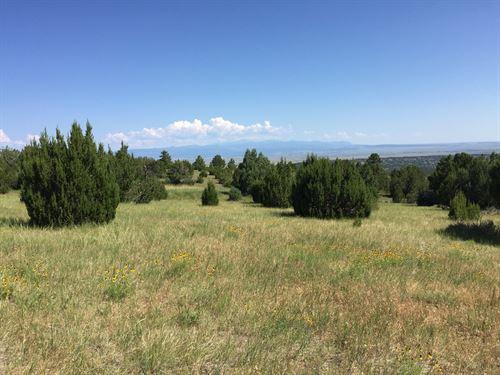 Savage Ranch : Pueblo : Colorado