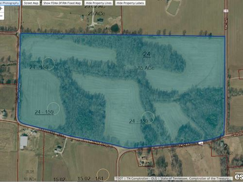 85 Acres, Crop Land And Woods : McKenzie : Henry County : Tennessee