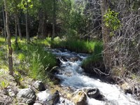 8182710 - 35 Acres With Year Round : Howard : Fremont County : Colorado