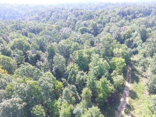 22.72Ac S. Fork Rd. Whitleyville : Whitleyville : Jackson County : Tennessee