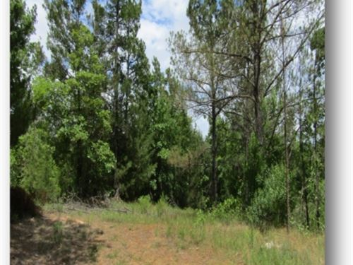 18 Acres In Montgomery County : Duck Hill : Montgomery County : Mississippi
