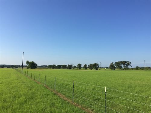 20 Acres With Great Building Site : Stephenville : Erath County : Texas