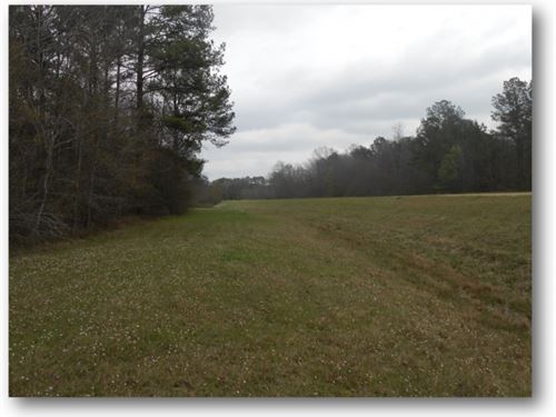 20 Acres In Rankin County : Pearl : Rankin County : Mississippi
