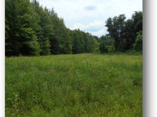 204.4 Acres In Panola County : Courtland : Panola County : Mississippi