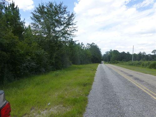 30-004N Meagher-Jernigan Trust : Flomaton : Escambia County : Alabama