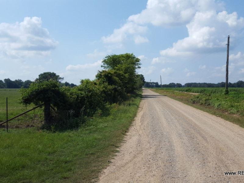 86 Ac - Pasture With Excellent Acce : Archibald : Richland Parish : Louisiana