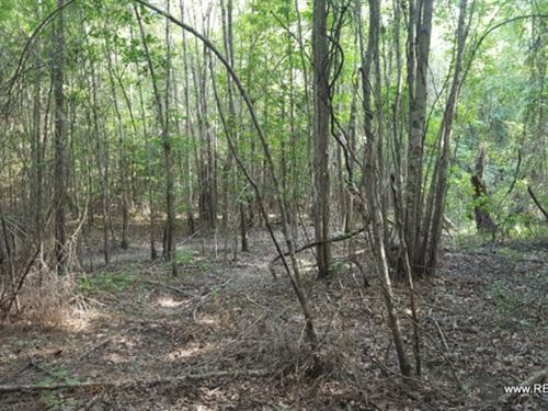 40 Ac - Timberland For Rural Home S : Calhoun : Ouachita Parish : Louisiana