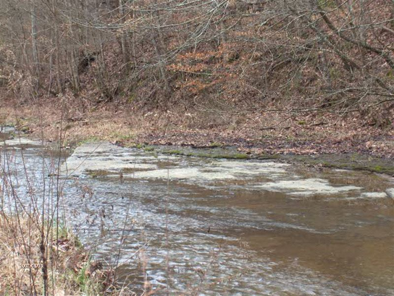 627.50 Ac Farm Birdwell Road : Whitleyville : Clay County : Tennessee