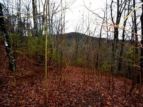 Georgia Mountain Land For Sale : Jasper : Pickens County : Georgia