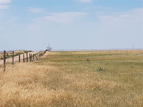Svacina Pasture : Sterling : Logan County : Colorado