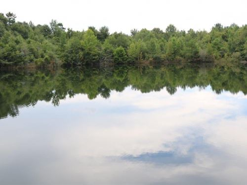 30 Acres In Marion County : Columbia : Marion County : Mississippi