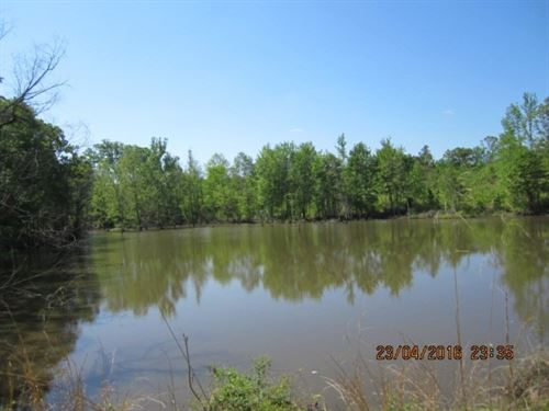 157 Acres In Marshall County : Holly Springs : Marshall County : Mississippi