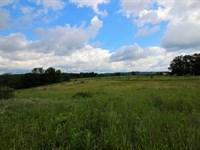 21+/- Acres Land, Building Lot : Danville : Montour County : Pennsylvania