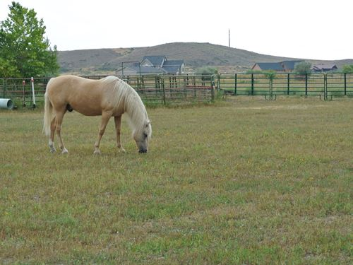 Sunshine Drive : Lander : Fremont County : Wyoming