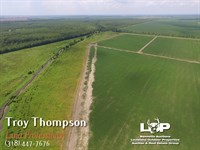 Madison Par. Farm And Hunting Land : Tallulah : Madison Parish : Louisiana