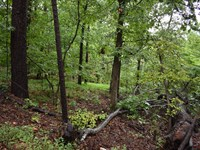 Great Land For Home : Tahlequah : Cherokee County : Oklahoma
