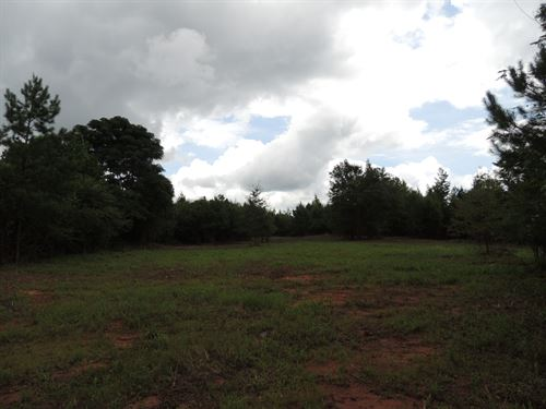 16.93 Ac Trammell Bottom Road : Greenville : Meriwether County : Georgia