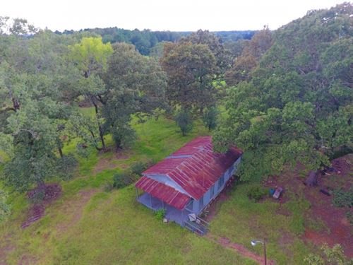 56 Acre Timber And Pasture With Hou : Saline : Natchitoches Parish : Louisiana