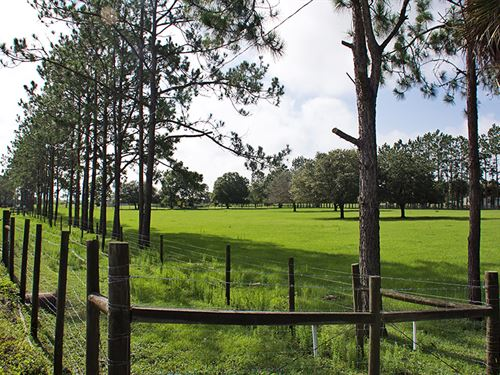 Mulberry Equestrian Home : Mulberry : Polk County : Florida
