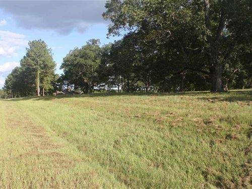 Beautiful Home Site On 8 Acres Perry Peach County Georgia