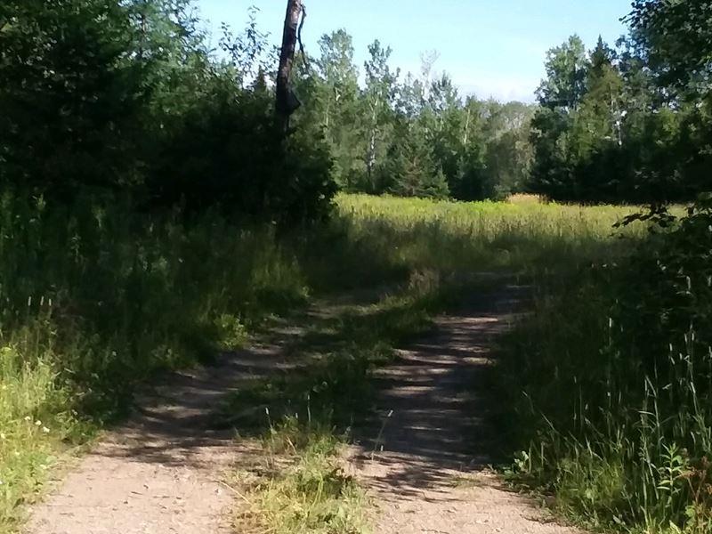 93 Acre Farmland Parcel For Sale : Caribou : Aroostook County : Maine